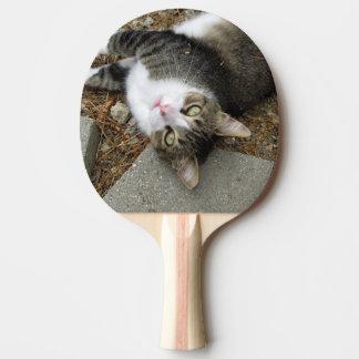 Umgedrehtes Tabby-Klingeln Pong Paddel Tischtennis Schläger