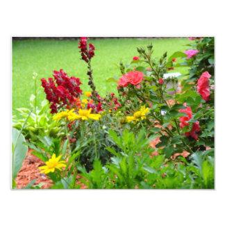 Un beau jardin d'été  tirage photo