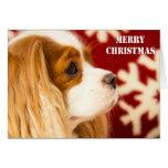 Unbekümmerte Weihnachtskarte König-Charles Grußkarte