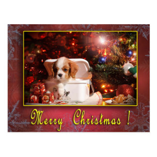 Unbekümmerte Weihnachtskarte Postkarte