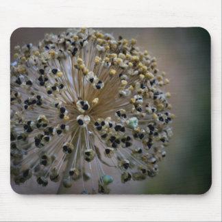 Ungewöhnliche Blume Mousepad