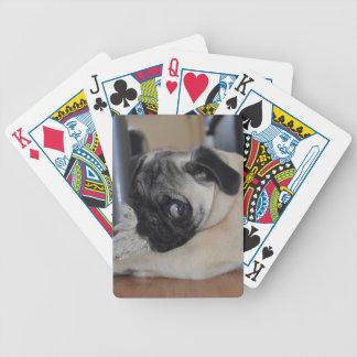 Unser kleiner Welpe 1 Poker Karten