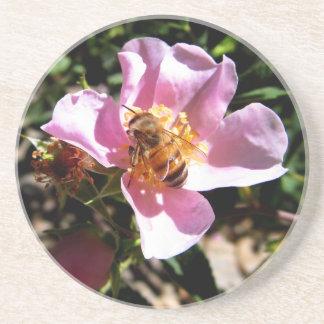 Untersetzer - Biene auf einer wilden Rose