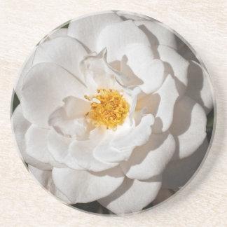 Untersetzer, Sandstein mit einer weißen Rose Getränkeuntersetzer