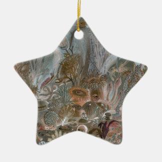 Unterwasser Keramik Stern-Ornament
