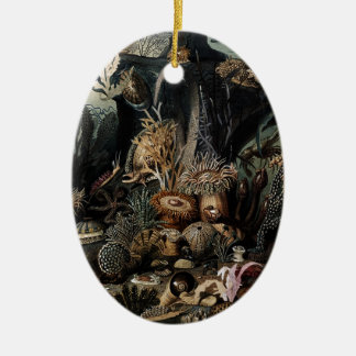 Unterwasser Ovales Keramik Ornament