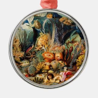 Unterwasser Rundes Silberfarbenes Ornament