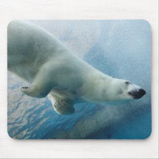 UnterwasserFoto eines polaren Bären Mousepad
