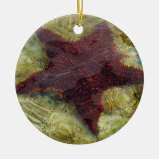 Unterwasserstarfish-tropische Tierphotographie Rundes Keramik Ornament