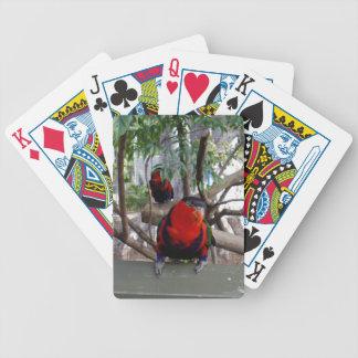 Unverschämter Gesichts-Regenbogen Lorikeet, Bicycle Spielkarten