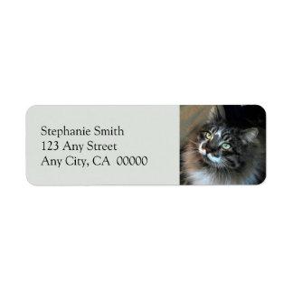 Unwiderstehlicher Katze Zorro Rücksendeetikett