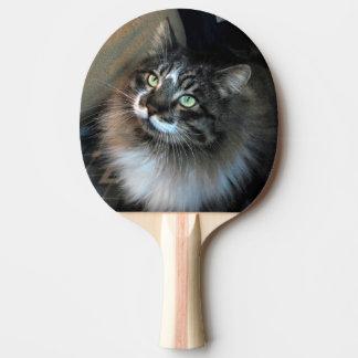 Unwiderstehliches Katze Zorro Klingeln Pong Paddel Tischtennis Schläger