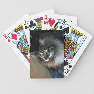 Unwiderstehliches Katzen-Fahrrad-Spielkarten Bicycle Spielkarten