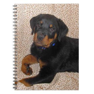 Unwiderstehliches Rottweiler Welpen-Notizbuch Notizblock