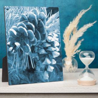 Ursprüngliches WeihnachtsKiefer-Eisblau pinecone Fotoplatte