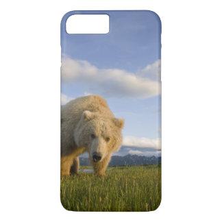 USA, Alaska, Katmai Nationalpark, Braunbär 3 iPhone 8 Plus/7 Plus Hülle