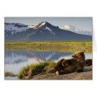 USA, Alaska, Katmai Nationalpark, Braunbären 2 Karte