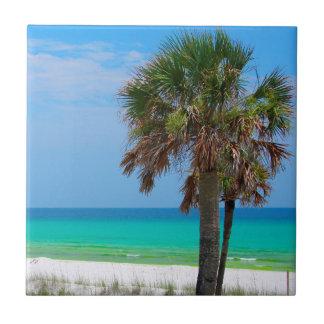 USA, Florida. Palmen auf Smaragdküste Keramikfliese
