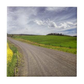 USA, Idaho, Idaho County, Canola Feld Keramikfliese