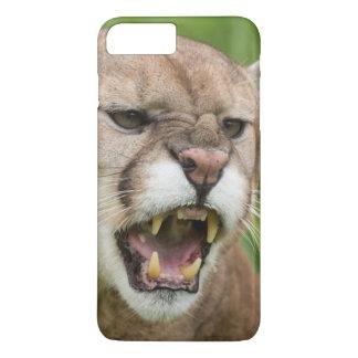 USA, Minnesota, Sandstein, Minnesota-wild lebende iPhone 8 Plus/7 Plus Hülle