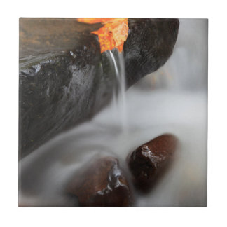 USA, Oregon, Columbia River Schlucht, Fliese