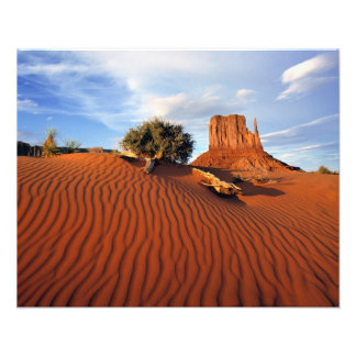 USA, Utah, Monument-Tal. Wind schafft Photographie