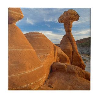 USA, Utah, Prunktreppe Escalante-National Keramikfliese