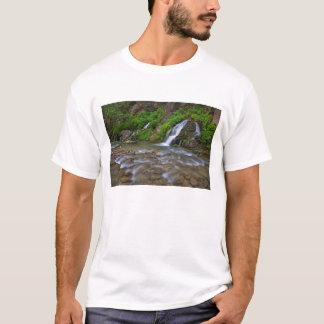 USA, Utah, Zion Nationalpark.  Große Frühlinge T-Shirt