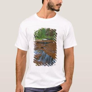 USA, Utah, Zion Nationalpark. Landschaftlich von T-Shirt