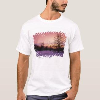 USA, Virginia, Shenandoah Nationalpark, T-Shirt