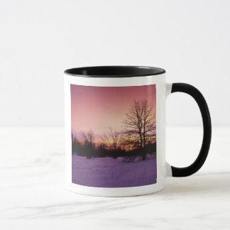 USA, Virginia, Shenandoah Nationalpark, Tasse