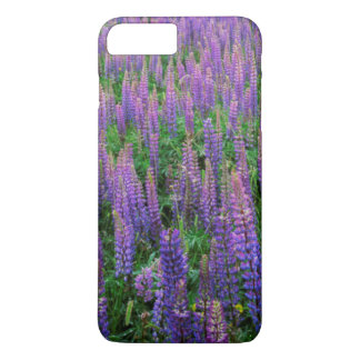 USA, Washington, Clallam County, Lupine iPhone 8 Plus/7 Plus Hülle