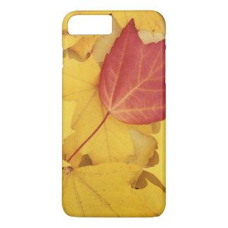USA, Washington, Fink-Arboretum, Rot und iPhone 8 Plus/7 Plus Hülle