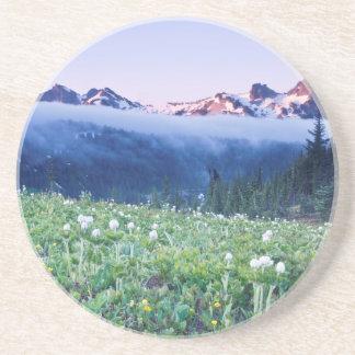 USA, Washington, Nationalpark des Mount Rainier 4 Sandstein Untersetzer