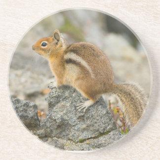 USA, Washington, Nordkaskaden-Nationalpark 8 Sandstein Untersetzer