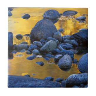 USA, Washington, Okanogan-Wenatchee Keramikfliese