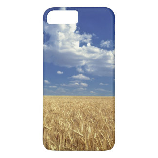 USA, Washington-Staat, Colfax. Reifer Weizen iPhone 8 Plus/7 Plus Hülle