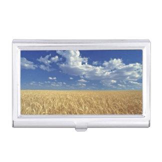 USA, Washington-Staat, Colfax. Reifer Weizen Visitenkarten Dose