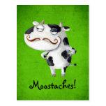 Vache avec des moustaches cartes postales
