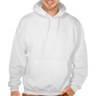 Vagues colorées des notes de musique sweatshirt à capuche