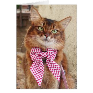 Valentinstag-somalische Katze mit Herzen Bowtie Karte