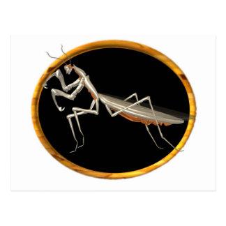 Valxart preying Mantis-Naturikone Postkarte