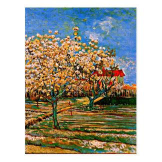 Van Gogh - Obstgarten in der Blüte Postkarte
