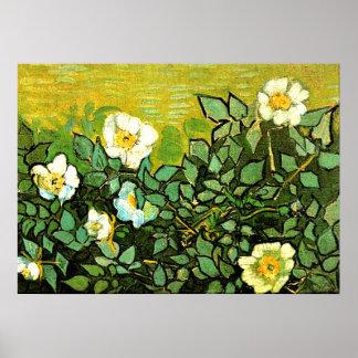 Van Gogh - wilde Rosen, Van Goghblumenmalerei Poster