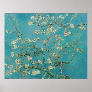 Van- Goghmandel-Blüten-Plakat Poster