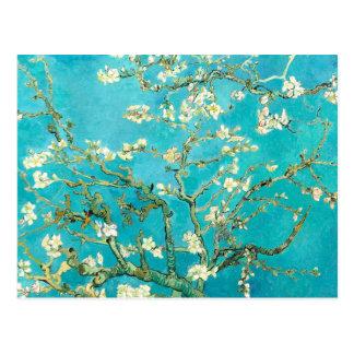 Van- Goghmandel-Blüten Postkarte