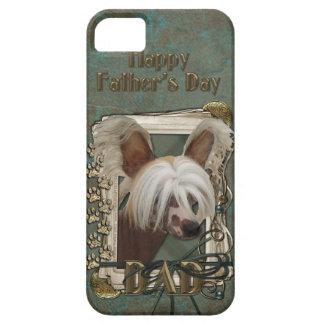 Vatertag VATI - Steintatzen - Crestie - Jaspis iPhone 5 Schutzhüllen