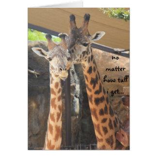 Vatertags-Karte, Giraffenpaar, schauen oben zum Karte