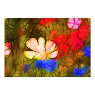 Vector plus flower meadow with many colorful flowe impression photographique