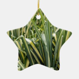 Verändertes Segge-Gras Keramik Ornament